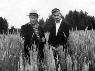 Растениеводство в Сибири создавали ученики Вавилова