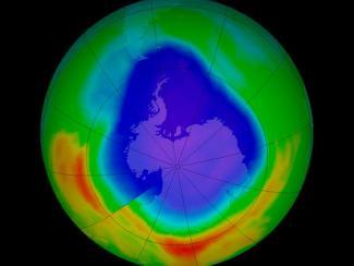 Озон одолел старые холодильники