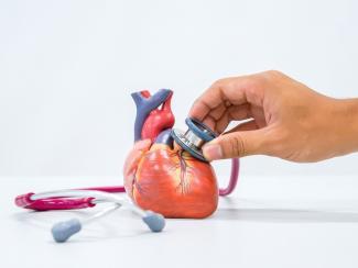 Ученые разрабатывают инструменты оценки риска развития инфаркта миокарда