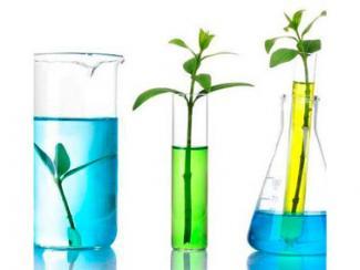 «Зеленое» топливо для мировой экономики