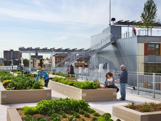 Как организовать городскую жизнь по-новому?