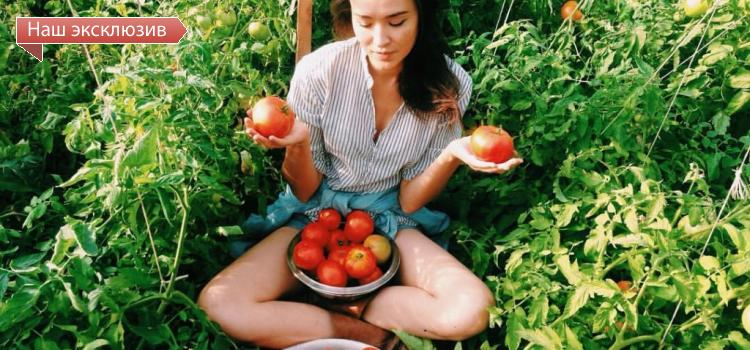 Есть ли будущее у «умных» сити-ферм и смогут ли они конкурировать с тепличными хозяйствами?