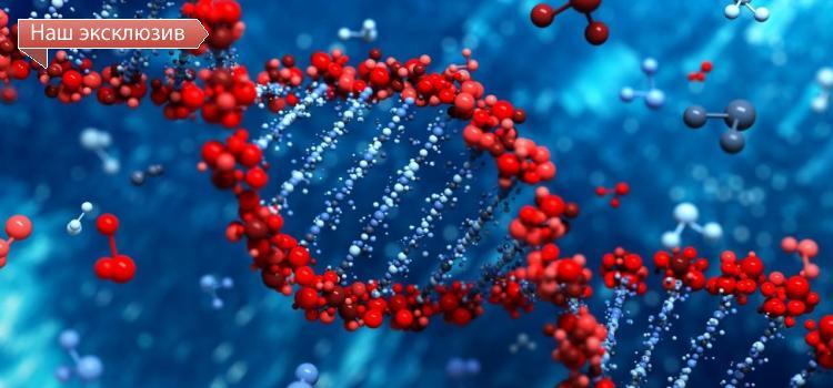 Ученые ИЦиГ открыли новые возможности «гормонов роста» растений