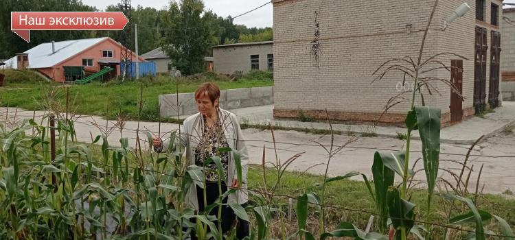 Интервью с руководителем отделения «Курчатовский геномный центр ИЦиГ СО РАН» Еленой Салиной