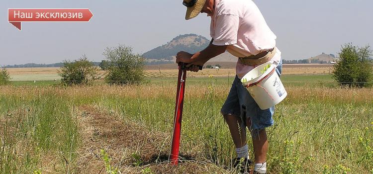 Есть ли возможность полностью отказаться от «химии» в сельском хозяйстве?